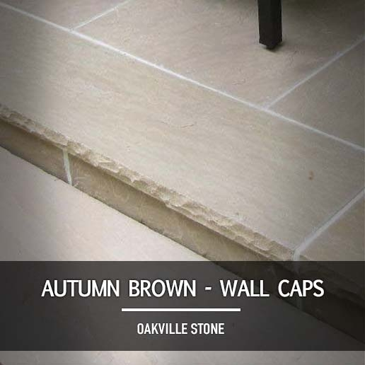 Autumn Brown Wall Caps
