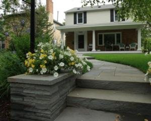 Bluestone Split Steps