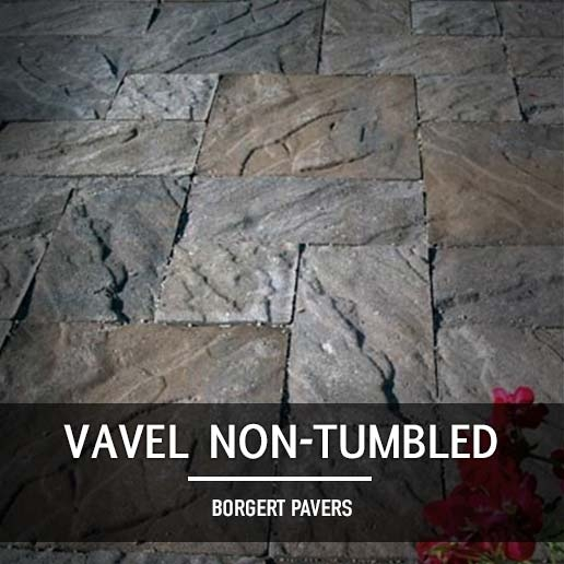 Borgert Vavel Non-Tumbled